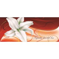 Virág minta poszter, fotótapéta 301VEP /250x104 cm/