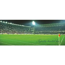 Stadion poszter, fotótapéta 306VEP /250x104 cm/