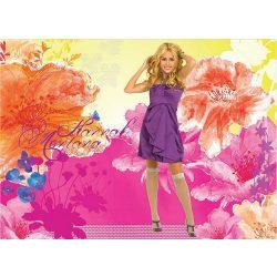Hannah Montana poszter, fotótapéta 4-010D-P4 /254x184/