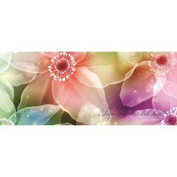 Színes nárciszok poszter, fotótapéta 421VEP /250x104 cm/