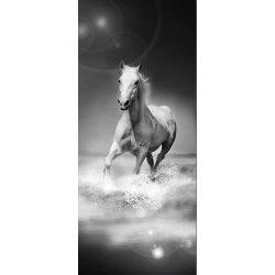 Ló vlies poszter, fotótapéta 426VET /91x211 cm/