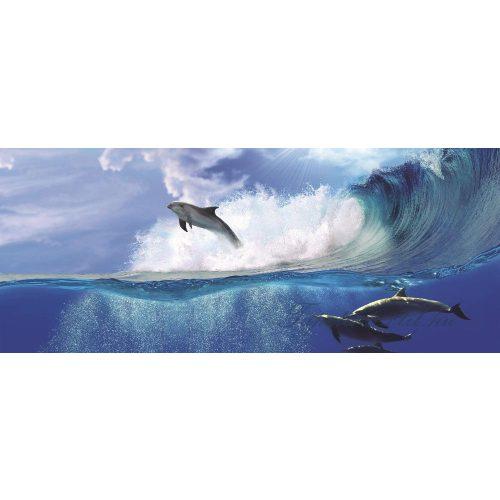 Delfin vlies poszter, fotótapéta 442VEEXXL /624x219 cm/