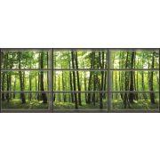 Ablakból vlies poszter, fotótapéta 443VEEXXL /624x219 cm/