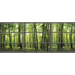 Ablakból vlies poszter, fotótapéta 443VEEXXXL /832x254 cm/