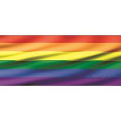 Zászló poszter, fotótapéta 491VEP /250x104 cm/