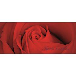 Rózsa minta vlies poszter, fotótapéta 560VEP /250x104 cm/
