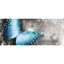 Pillangó poszter, fotótapéta 574VEP /250x104 cm/