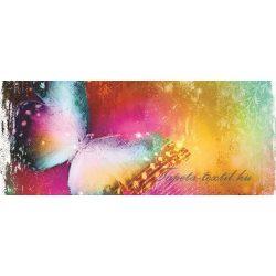 Pillangó poszter, fotótapéta 575VEP /250x104 cm/