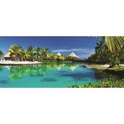Hawaii vlies poszter, fotótapéta 577VEP /250x104 cm/