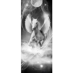 Pegazus vlies poszter, fotótapéta 590VET /91x211 cm/