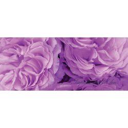Lila virágok vlies poszter, fotótapéta 657VEP /250x104 cm/