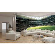 Stadion2 vlies poszter, fotótapéta 739VEEXXL /624x219 cm/