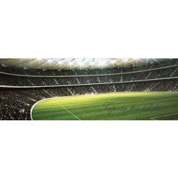 Stadion vlies poszter, fotótapéta 739VEEXXXL /832x254 cm/