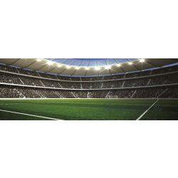 Stadion vlies poszter, fotótapéta 741VEEXXL /624x219 cm/