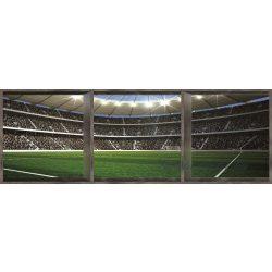 Stadion vlies poszter, fotótapéta 742VEEXXL /624x219 cm/