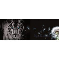 Tigris és pitypang vlies poszter, fotótapéta 792VEEXXXL /832x254 cm/