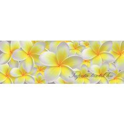 Vanília virág vlies poszter, fotótapéta 793VEEXXL /624x219 cm/