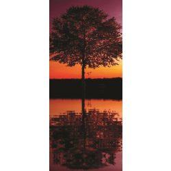 Tree vlies poszter, fotótapéta 8-007VET /91x211 cm/