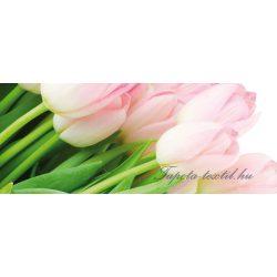 Tulipánok vlies poszter, fotótapéta 8-018VEP /250x104 cm/