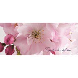 Alma virág vlies poszter, fotótapéta 8-020VEP /250x104 cm/
