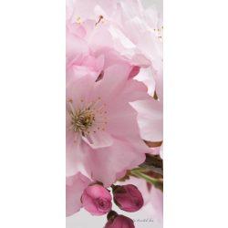 Alma virág vlies poszter, fotótapéta 8-020VET /91x211 cm/