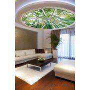 Bamboo vlies poszter, fotótapéta 913VEZ1 /208x208 cm/