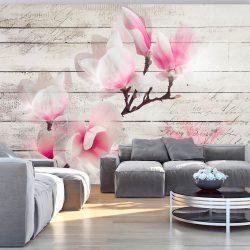 Fotótapéta - Gentleness of the Magnolia