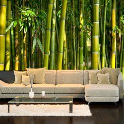 Fotótapéta - Oriental Garden