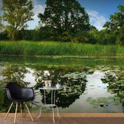 Fotótapéta - The Magic Pond