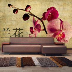 Fotótapéta - Japanese orchid
