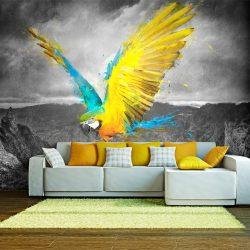 Fotótapéta - Exotic parrot
