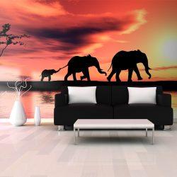 XXL Fotótapéta - elephants: family