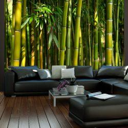 Fotótapéta - Ázsiai bambusz erdő