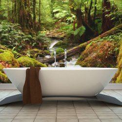 Fotótapéta - Rainforest