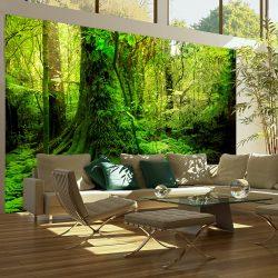 Fotótapéta - Jungle