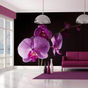 Fotótapéta - stylish  orchis