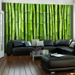 Fotótapéta - Bambusz fali