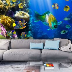 Fotótapéta - Víz alatti paradicsom