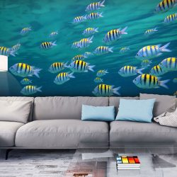 Fotótapéta - Underwater táj - Karibi