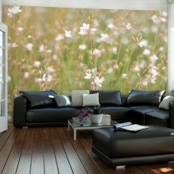 Fotótapéta - Fehér finom virágok