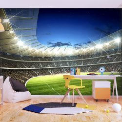 Fotótapéta - National stadium