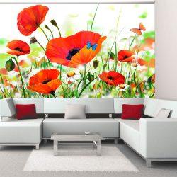 Fotótapéta - Country poppies