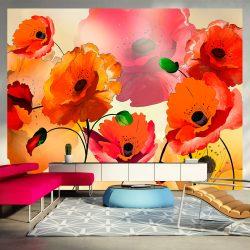 Fotótapéta - Velvet poppies