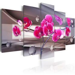 Kép - Orchid egy visszafogott, háttér