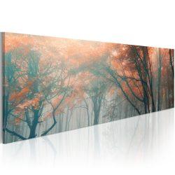 Kép - Őszi köd