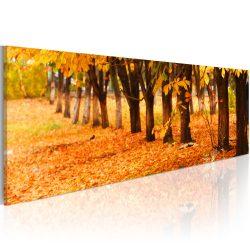 Kép - Golden leaves