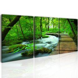 Kép - Forest broadwalk - triptych