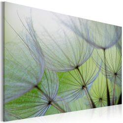 Kép - Dandelion in the wind