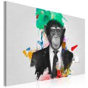 Kép - Mr Monkey