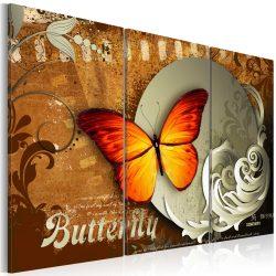 Kép - Fiery butterfly and  full moon